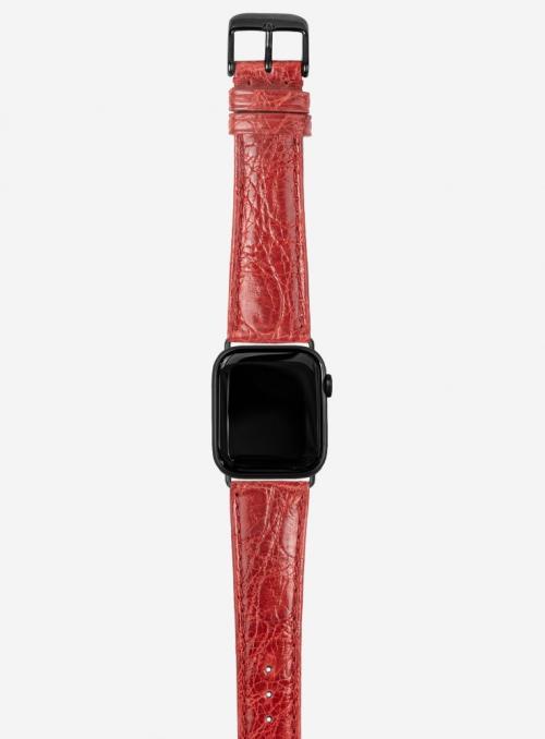 Dundee • Genuine brasile crocodile watchstrap for Apple Watch