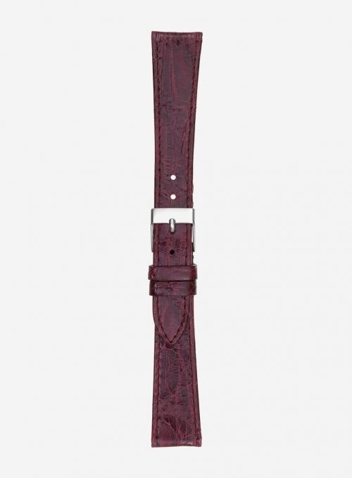 Cinturino in vero coccodrillo brasile • 517C