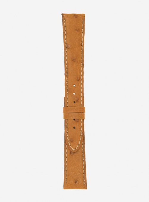 Genuine ostrich watchstrap • 718